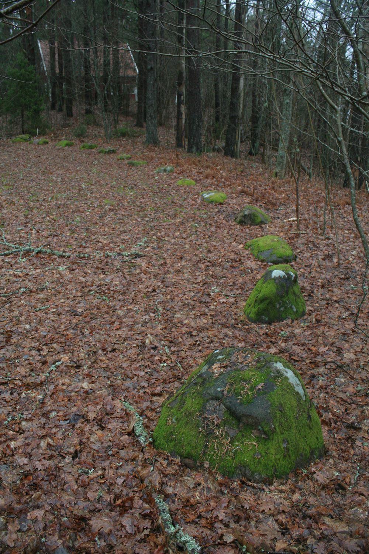 © Ljungby kommun, Bollstad - skeppssättning och gravfält