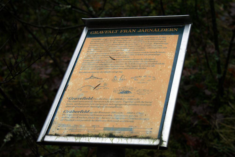 © Ljungby kommun, Gostabacken - gravfält och skattfynd