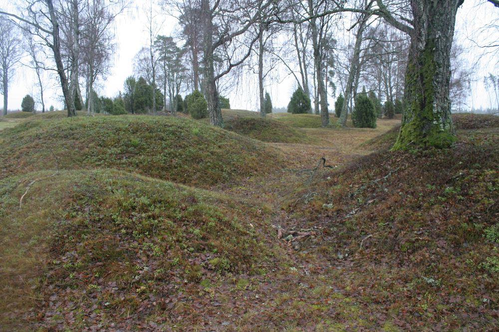 © Ljungby kommun , Hallsjö (Old Plantation)