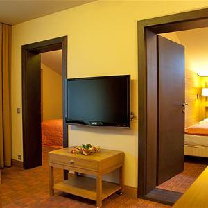 Hotel OTP Birkenhof - Bad Kleinkirchheim