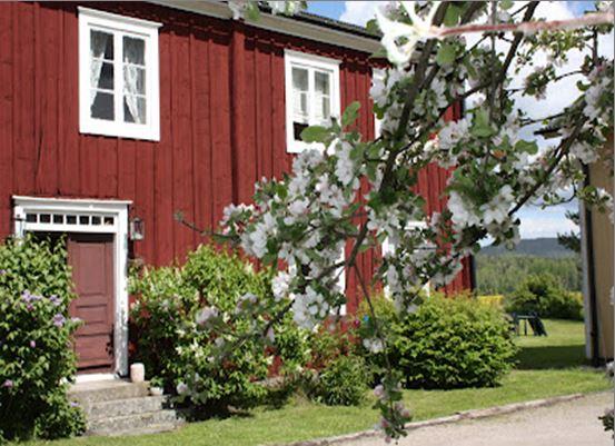 Hälsingegården Jon-Lars i Flor