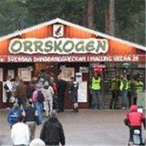 Folkets Park, Orrskogen - Malung