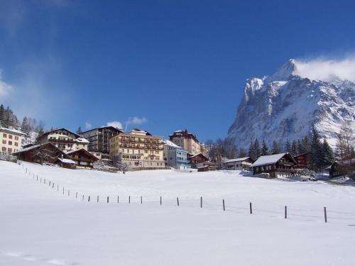 Bel Air Eden - Grindelwald