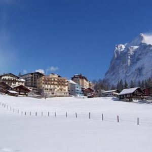 Bel Air Eden Grindelwald