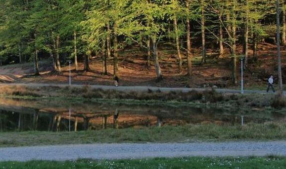 Foto Tostarpsgårdens camping, Tostarpsgårdens camping, stugor och lägergård