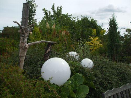 Foto AnnMargreth Richard , Ann Margreth och Jannes trädgård