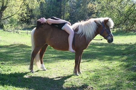 Horses: Kråkriset's Icelandic horses