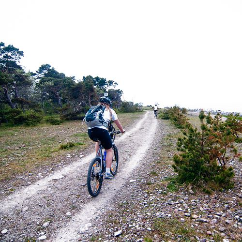 The great mountain bike ride
