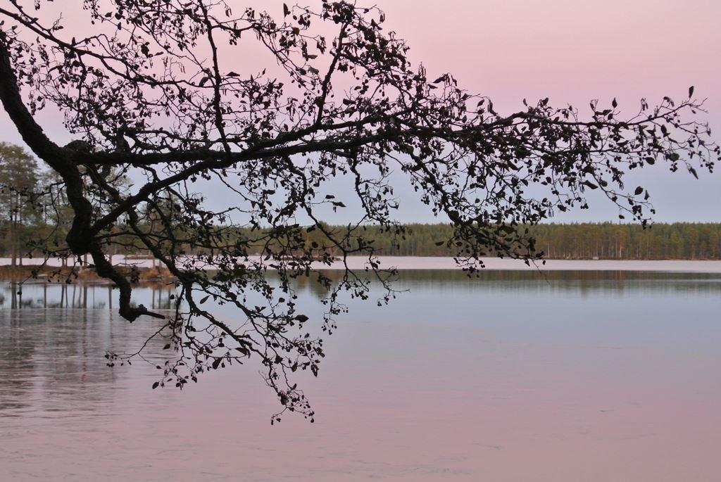 Bäcksjön