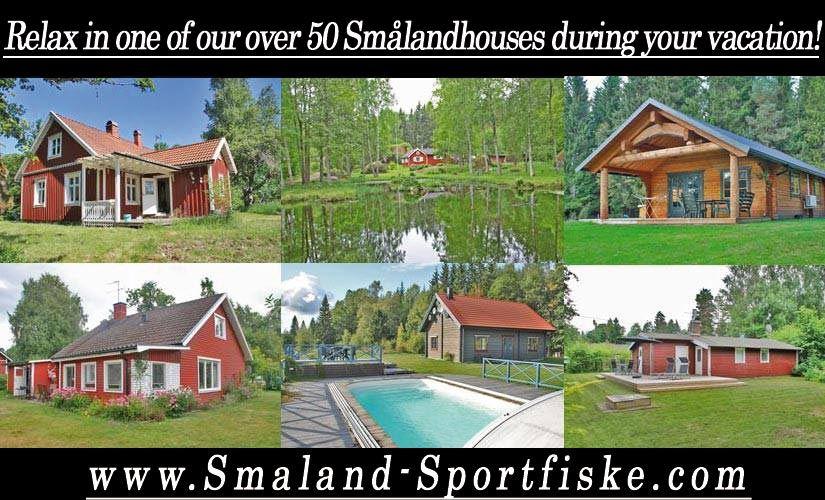 Stugförmedling Ferienhaus Åsnen