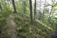 Naturreservat Dragsåsen