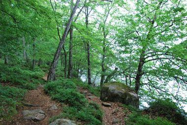 Naturreservat Hissö