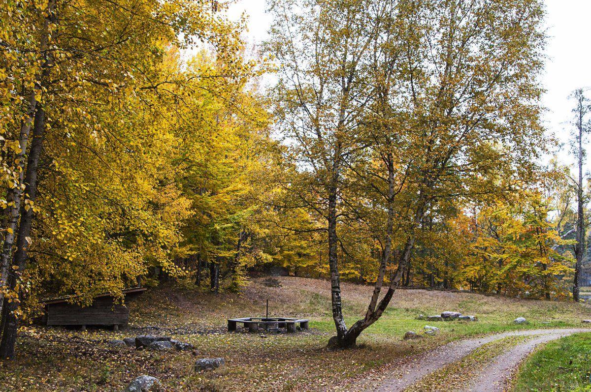 Naturschutzgebiet Helgö