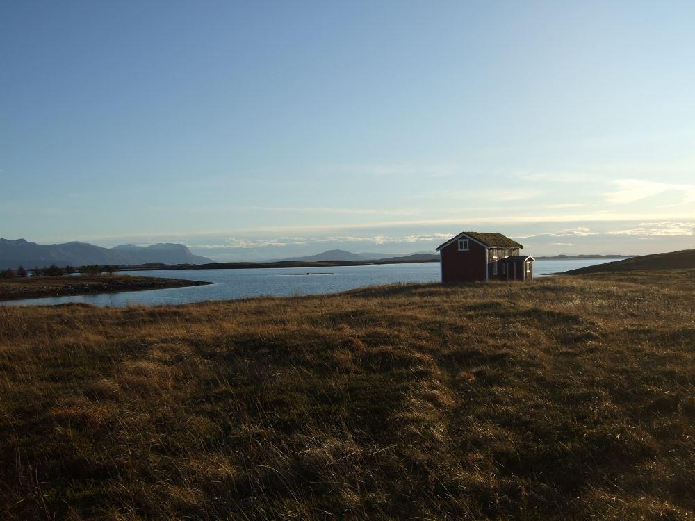 Båtturer til Emårsøy - bli med på unike opplevelser i Vegaøyan verdensarvområde.