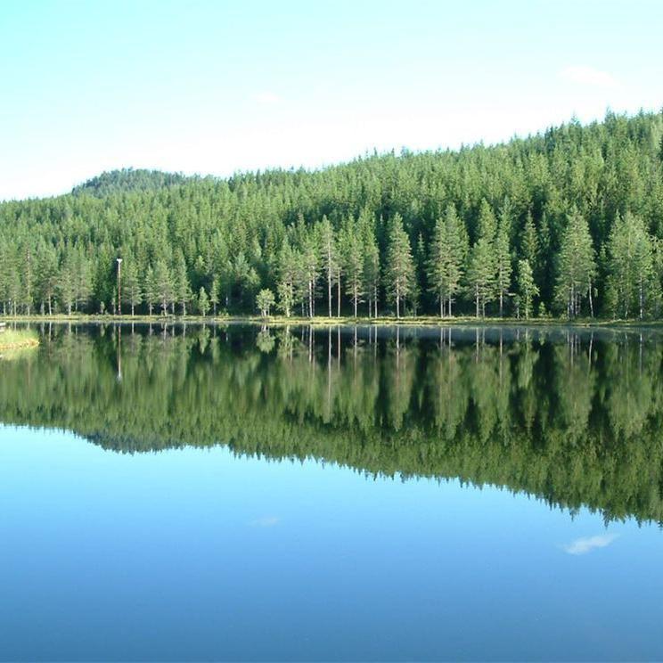 Foto: Christina Arebratt, Fiskevatten i Lögdö Vildmark