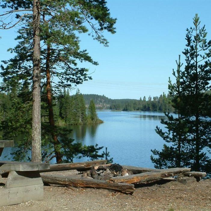 Foto: Christina Arebratt, naturcampingområde Lögdö Vildmark