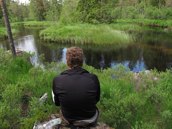 Borrsjöån & Lungsjöån Fly Fishing Club