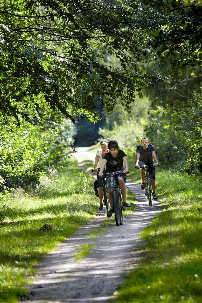 Cykelleden Dansjön runt