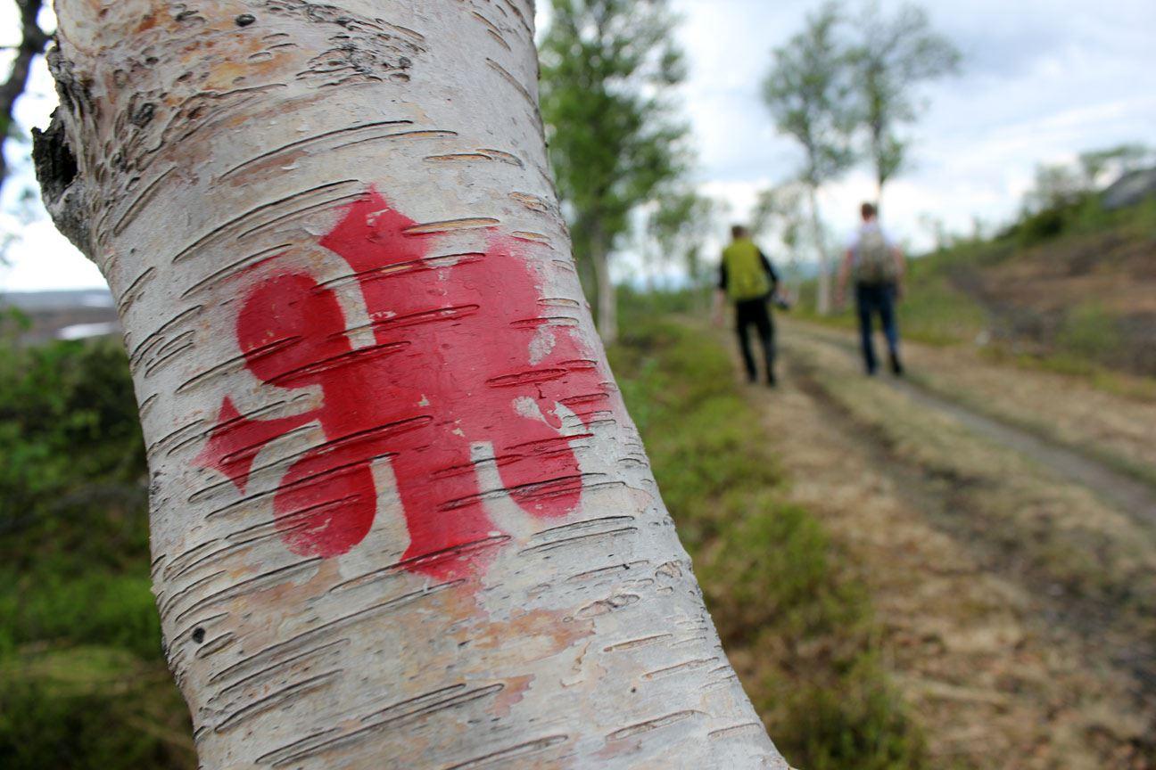 Walk St.Olavsleden - Stage 1 - 7 days