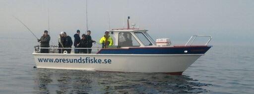 Öresundsfiske