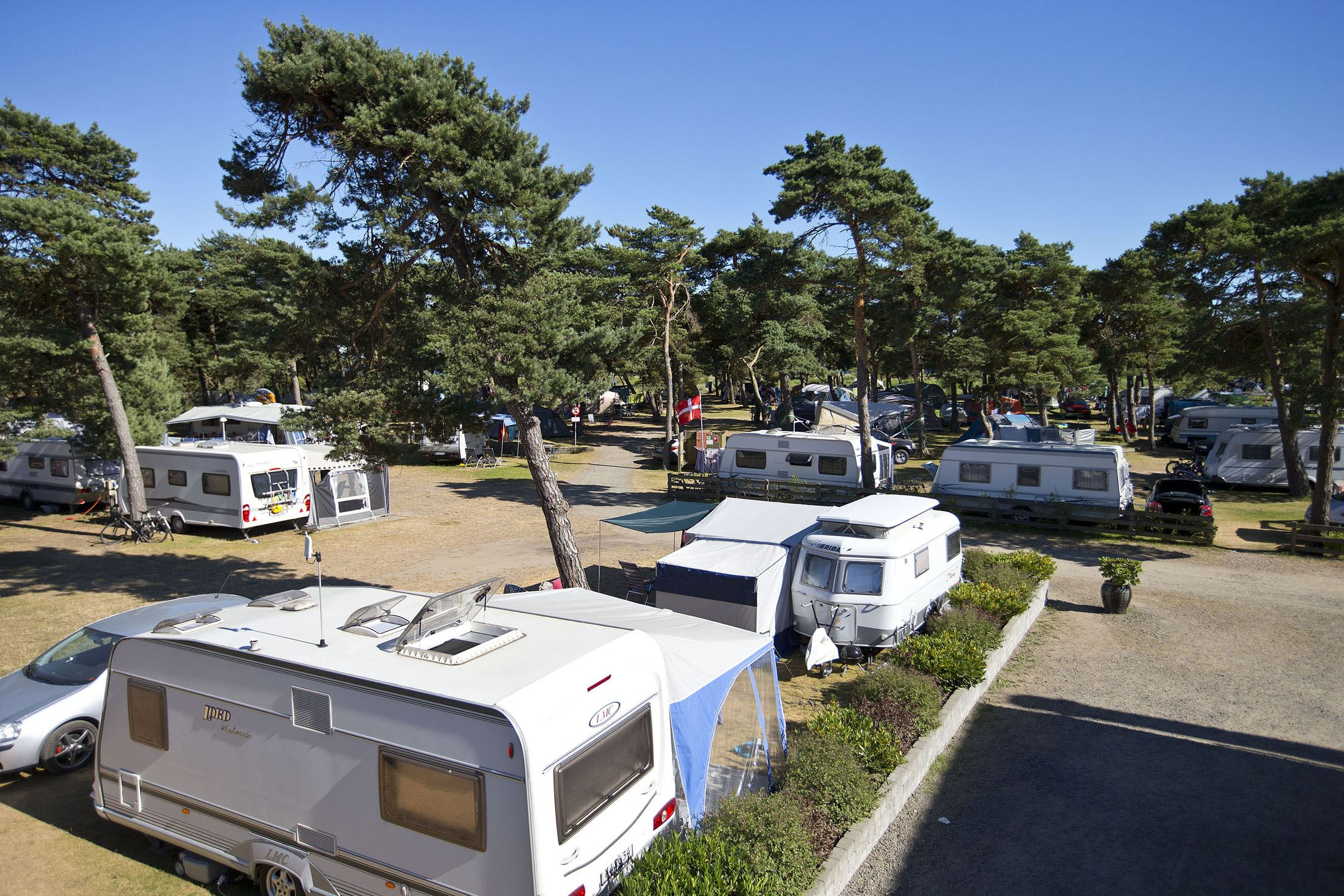 Dueodde Familiecamping udlejning campingvogn
