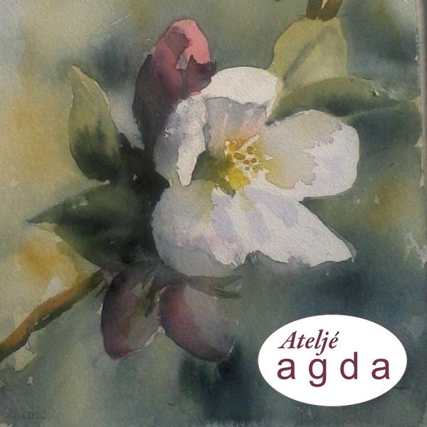 Ateljé Agda