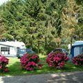 Færgegårdens camping