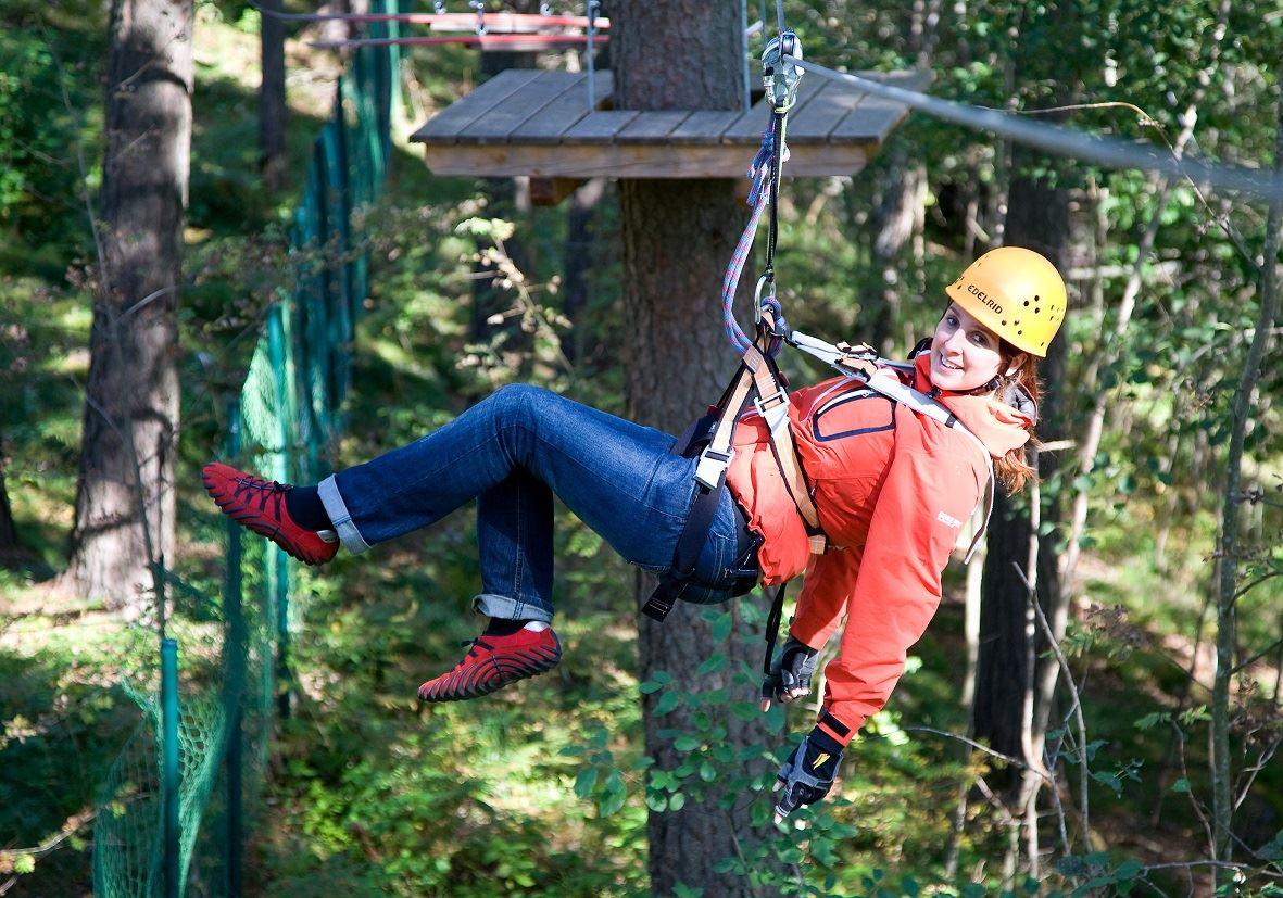 Upzone Adventure Forest