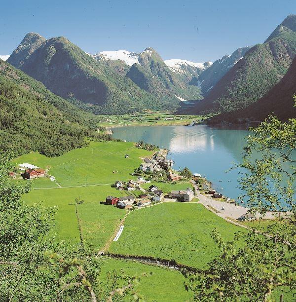 Fjord Cruise Fjærlandsfjord B2B