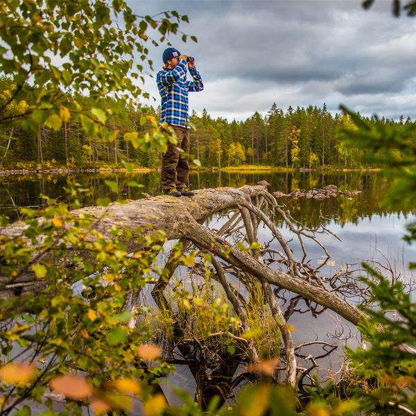 Wild Sweden - Kanotsafari