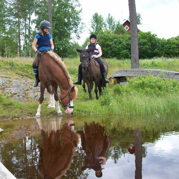 Horseriding at Hyttornas hästgård