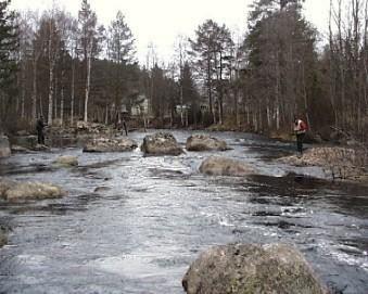 Envikens Fiskevårdsområde