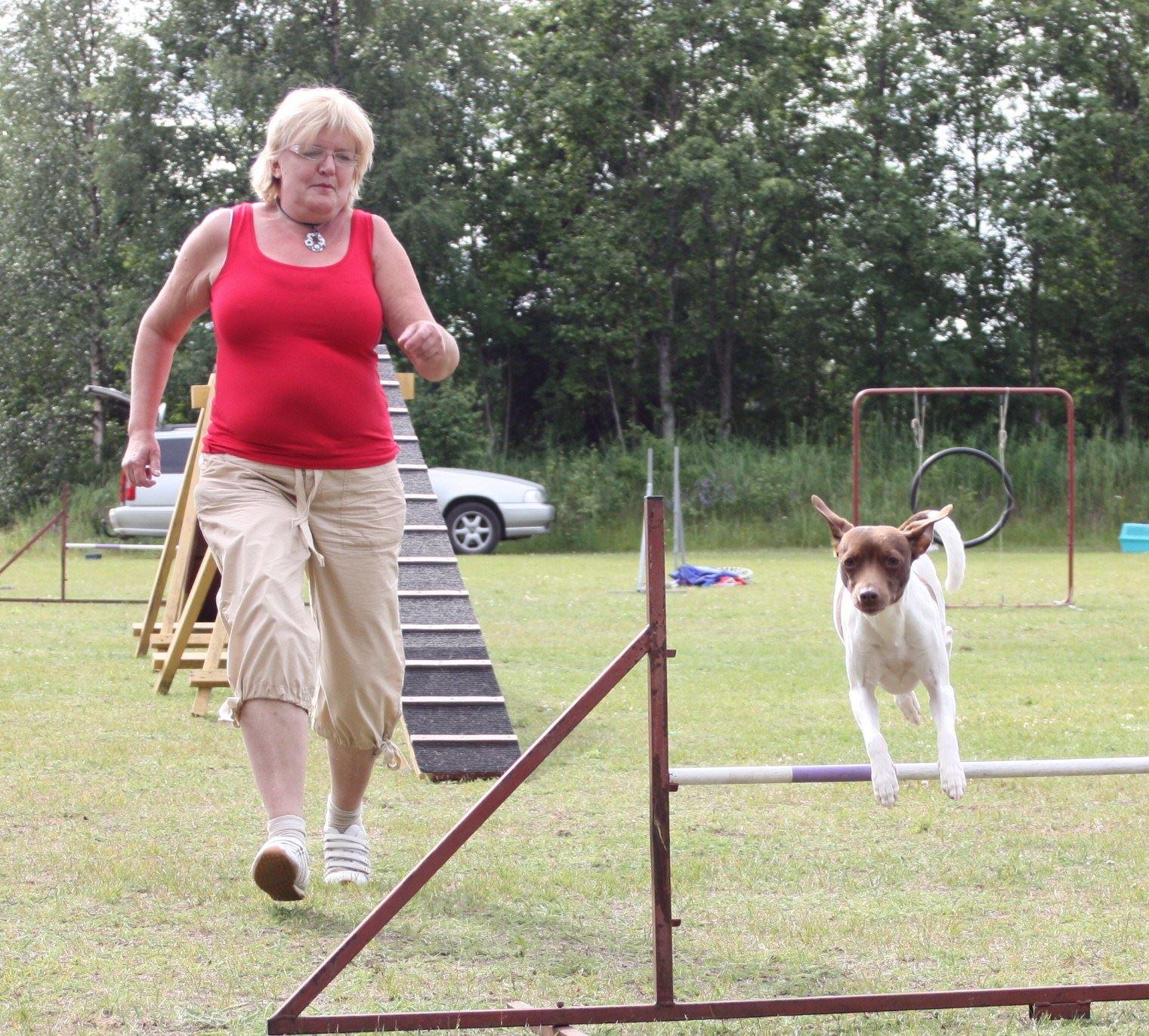 Agility träning vid HUNDraelvan . Hundkurser året runt se hemsidan för info
