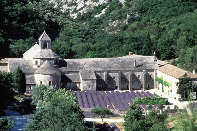 7.EXCURSION UNE JOURNEE EN PROVENCE