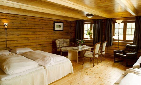 Mineralparken - Log house