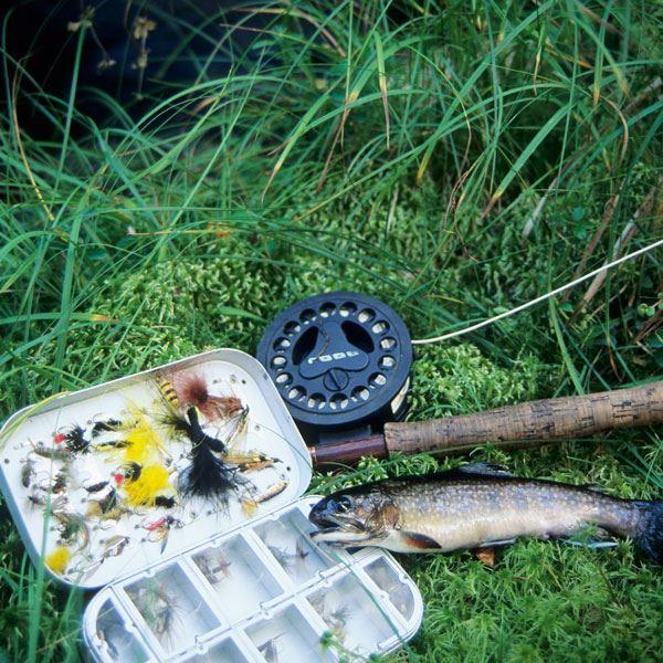 Helgpaket - Fiske