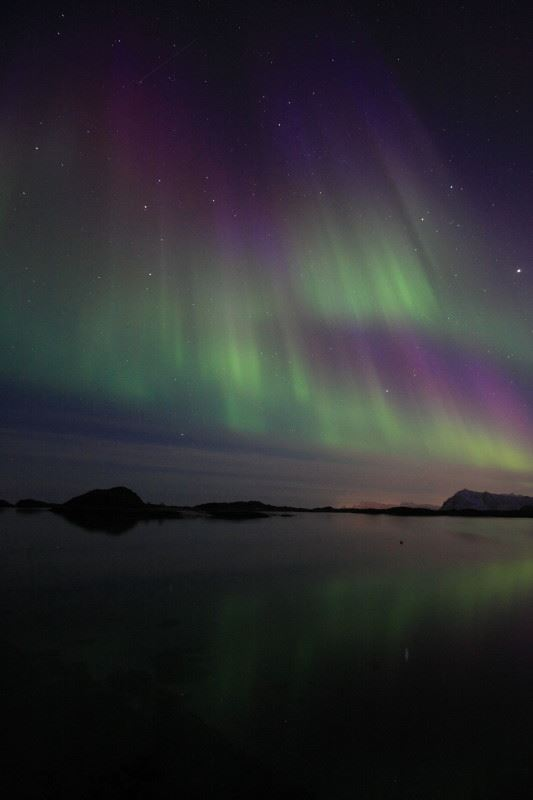 Guided Northern Lights trips by bus