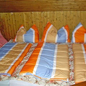 Semesterhus för upp till 24 personer med 8 rum på Almhof Wagrain - Wagrain