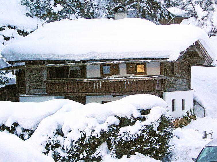 Semesterhus Pechalhütte för upp till 6 personer med 4 rum - Finkenberg