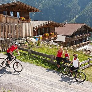 Semesterhus Grünwald Resort Sölden för upp till 6 personer med 4 rum - Sölden