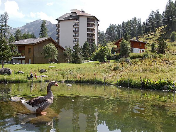 Lägenhet för upp till 4 personer med 2 rum på Mont-Fort - Siviez-Nendaz