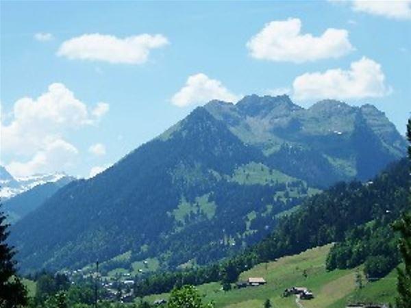 Birkenegg Gstaad