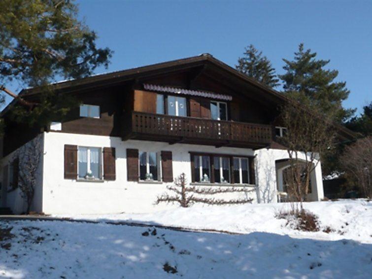 Lägenhet för upp till 4 personer med 3 rum på Birkenegg - Gstaad