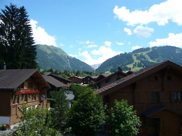 Lägenhet för upp till 4 personer med 2 rum på Im Wiesengrund - Gstaad
