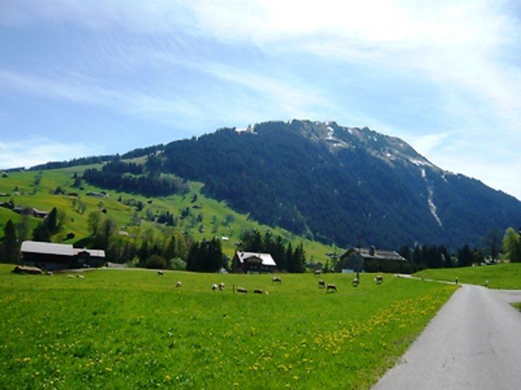 Les Silenes - Gstaad