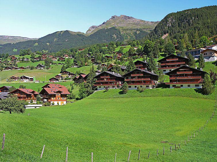Schulerszaun 5 - Grindelwald