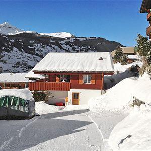 Ahornen - Grindelwald