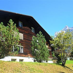 Almis 1 - Grindelwald