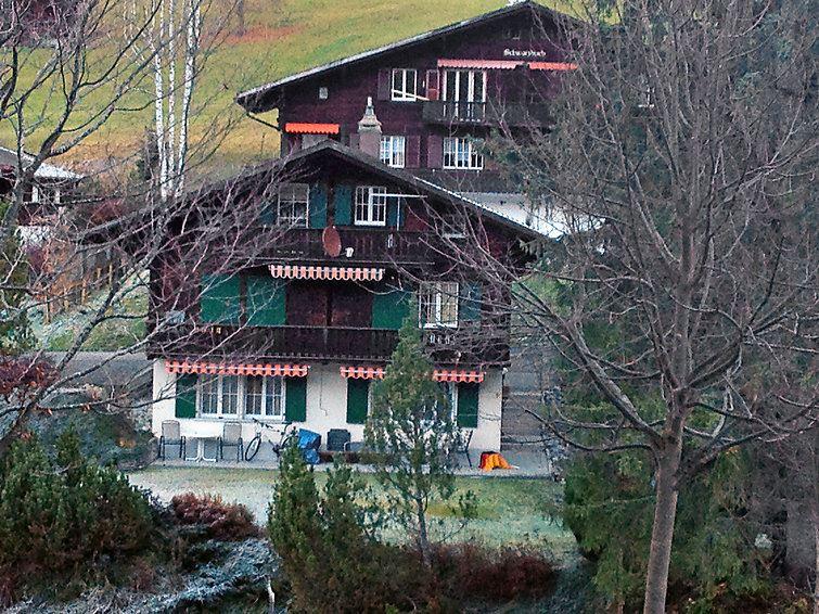 Leilighet for opp til 4 personer med 3 rom på Spassvogel - Grindelwald