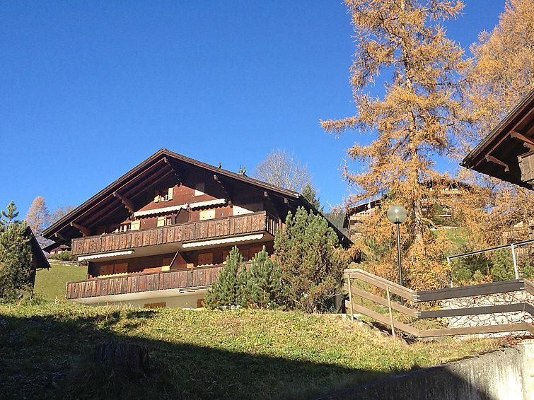 Foehre Grindelwald